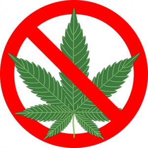 cannabis verbod thuisteelt