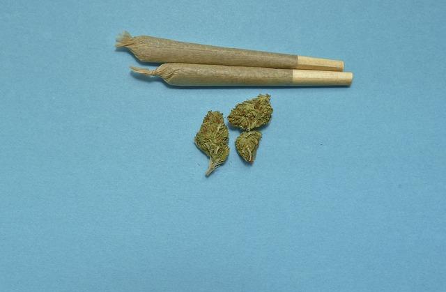 joint cannabis blowen